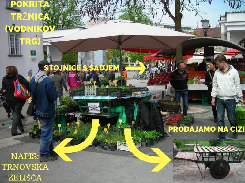 pokrita tržnica Ljubljana