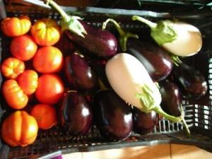 sveža domača zelenjava